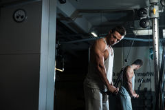 Triceps Exercise Royalty Free Stock Images
