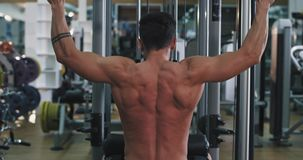 Triceps exercises on the gym muscular man working hard doing his workout plan , healthy lifestyle concept. 4k stock video