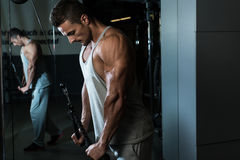 Triceps Pulldown Workout. Young Man On The Triceps Pulldown Weight Machine At A Health Club Royalty Free Stock Photo