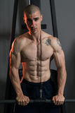 Triceps Pulldown Workout. Young Muscular Fitness Bodybuilder Doing Heavy Weight Exercise For Triceps In The Gym Royalty Free Stock Photo