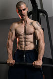 Triceps Pulldown Workout. Young Muscular Fitness Bodybuilder Doing Heavy Weight Exercise For Triceps In The Gym Stock Photo