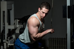 Triceps Push Downs Royalty Free Stock Photos