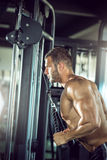 Triceps rope pushdown Royalty Free Stock Photo