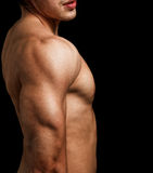 Triceps and shoulder of man with muscular fit body Royalty Free Stock Photo