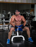Triceps training. Bodybuilder in the gym preparing for the exercise Royalty Free Stock Photo