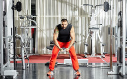 Triceps workout at cable machine Stock Photos