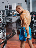 Triceps workout at a cable machine Royalty Free Stock Images
