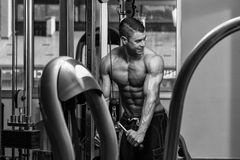 Triceps Workout With Cables Stock Images