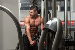 Triceps Workout With Cables Royalty Free Stock Photos