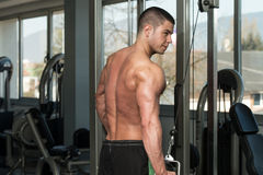 Triceps Workout With Cables Stock Photography