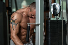 Triceps Workout Stock Images