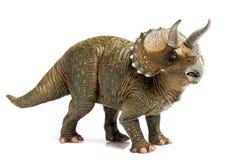 Triceratopo Fotografia Stock
