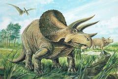 triceratops Foto de archivo
