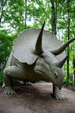 triceratops Images stock