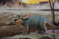 Triceratops del bebé en fondo jurásico foto de archivo libre de regalías