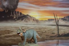 Triceratops del bebé en fondo jurásico imagen de archivo libre de regalías