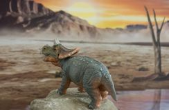 Triceratops del bebé en fondo jurásico fotografía de archivo libre de regalías