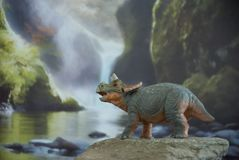 Triceratops del bebé en fondo jurásico imágenes de archivo libres de regalías