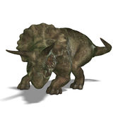 Triceratops del dinosaurio Fotografía de archivo