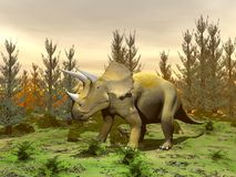 Triceratops dinosaur - 3D render Stock Photo