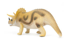 Triceratops dinosaur isolated Stock Photo