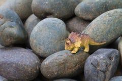 Triceratops dinosaur plastic toy. On pebble stone Royalty Free Stock Image