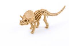 Triceratops dinosaur skeleton. On a white background Royalty Free Stock Photos