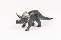 Triceratops dinosaur toy model Royalty Free Stock Images