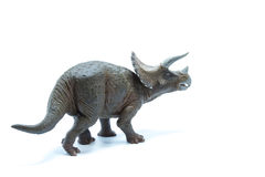 Triceratops dinosaurs toy  on white background - back vi Stock Image