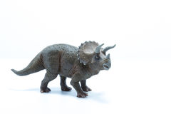 Triceratops dinosaurs toy  on white background - side vi Stock Photo