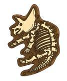 Triceratops-Fossil Stockbild