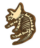 Triceratops Fossil Stock Image