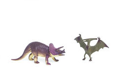Triceratops and Pterosaur dinosaur toy. On white background Royalty Free Stock Images