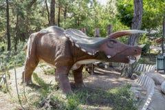 Triceratops rodzina - Opóźniony Cretaceous /76-65 milion rok temu Ja Zdjęcia Stock