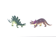 Triceratops and Stegosaurus dinosaur toy Royalty Free Stock Photo