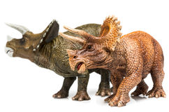 Triceratops. Two Triceratops figurines on white background Royalty Free Stock Image
