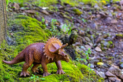 Triceratops walking on old moss with small shrub. Triceratops walking on old moss with small  shrub Stock Images