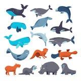 Tricheco e balena animali del delfino del carattere dell'acqua di vettore del mammifero del mare nell'insieme del marinaio dell'i illustrazione vettoriale