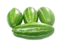 Trichosanthes dioica. Fresh Pointed gourd over white background Stock Image
