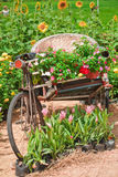 Triciclo da bicicleta do vintage. Imagens de Stock Royalty Free