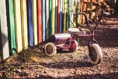Triciclo del patio Imagen de archivo