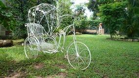 Triciclo no jardim Fotografia de Stock Royalty Free