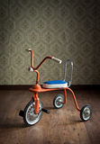 Triciclo variopinto d'annata Immagine Stock