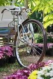 Triciclo velho Fotos de Stock Royalty Free