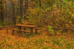 Tricity-Landschaftspark stockbild