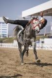 Trick des jungen Mannes, der ein Pferd reitet lizenzfreies stockbild