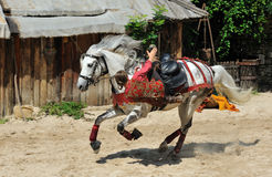 Trick riding,the Legend of Provins stock photos