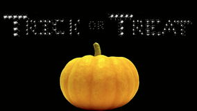 Trick or Treat, banner, white, pumpkin. Halloween message of Trick or Treat in black sparkling letters on orange stock footage