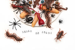 Trick or Treat candy bugs spilling out onto white background Stock Images