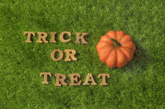 Trick or Treat on grass background, nature concept and wood idea Royalty Free Stock Photography